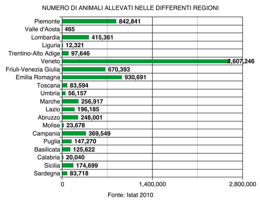 Conigli i numeri del settore essere animali for Numero senatori e deputati in italia
