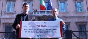 Consegnate 70.000 firme per la campagna VISONI LIBERI