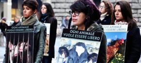 Giornata Mondiale per i Diritti Animali 2013