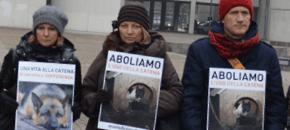 Custodia dei cani in Emilia Romagna