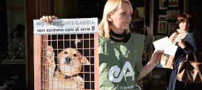 E.Romagna – Sit-in! contro regolamento choc per la custodia dei cani