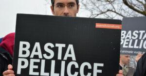Ottime notizie! Allevamento di visoni a Capriolo – Comune dice no