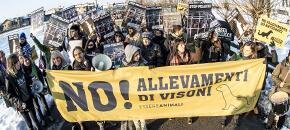 In centinaia ad Antegnate per dire NO all'allevamento di visoni