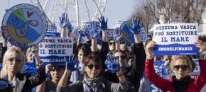 Mobilitazione al delfinario di Rimini. Con le mani blu per simboleggiare il mare