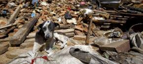 Aiutiamo tutte le vittime del terremoto in Nepal