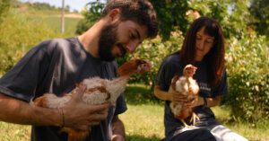 Viola e le altre… mai più in gabbia per fare uova!