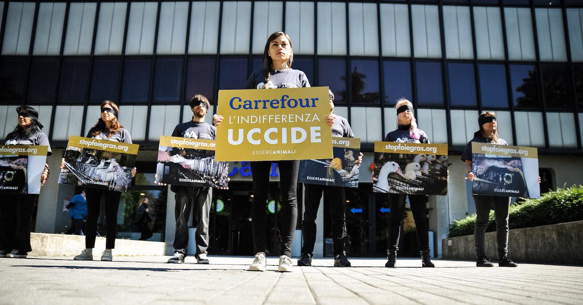 azione contro foie gras da carrefour