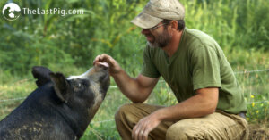 The Last Pig: quando l'utopia diventa realtà