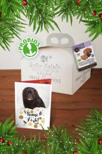 Box 4 dolci vegan di Natale + Biglietti di auguri