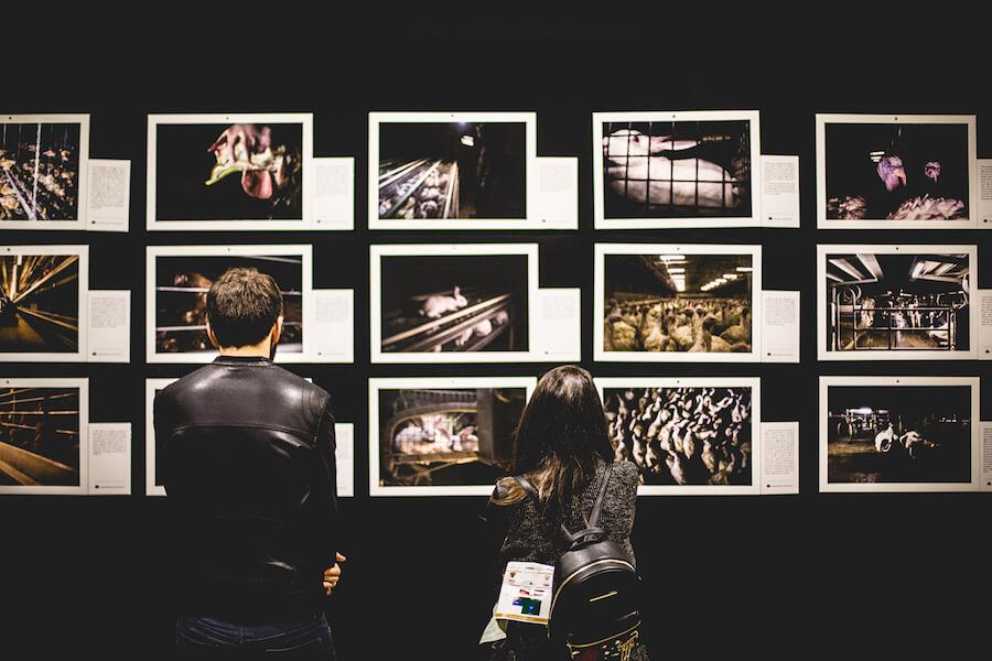 miveg 2017 mostre fotografiche