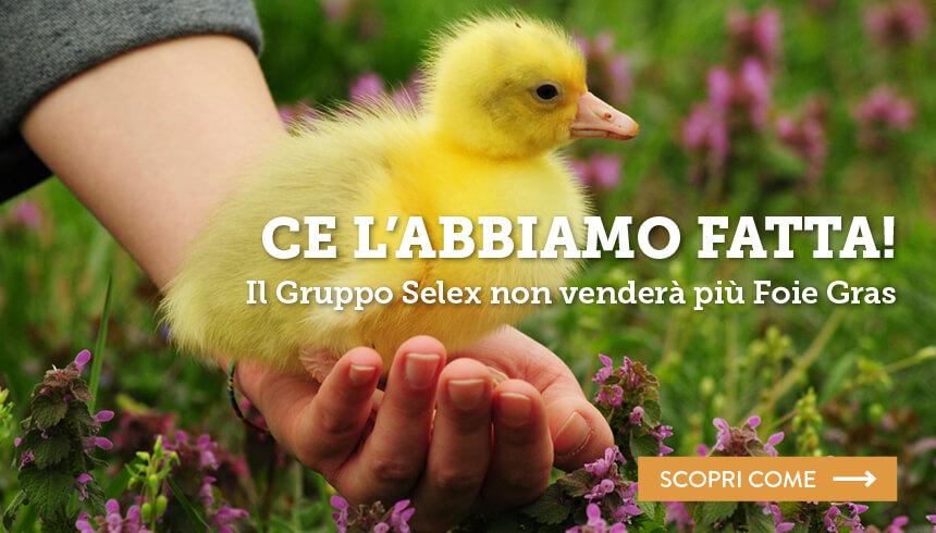 selex-stop-foie-gras_essereanimali