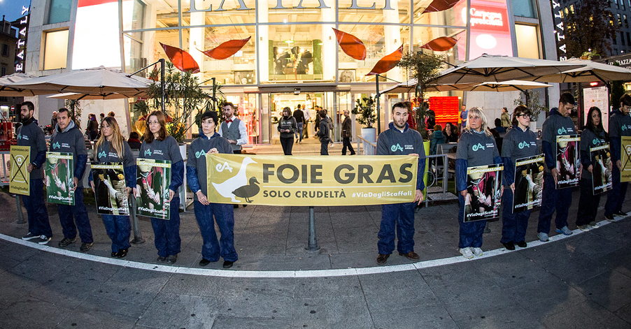 campagna contro foie gras di essere animali
