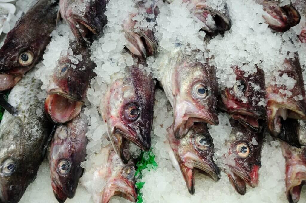 Pesci congelati al mercato