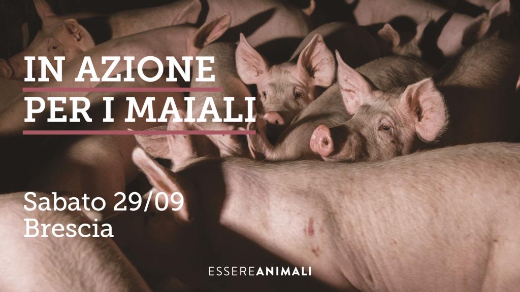 In azione a Brescia_Essere Animali