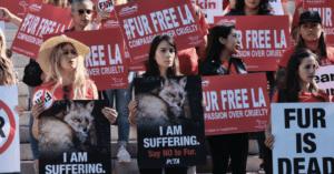 Los Angeles vieta la vendita di pellicce