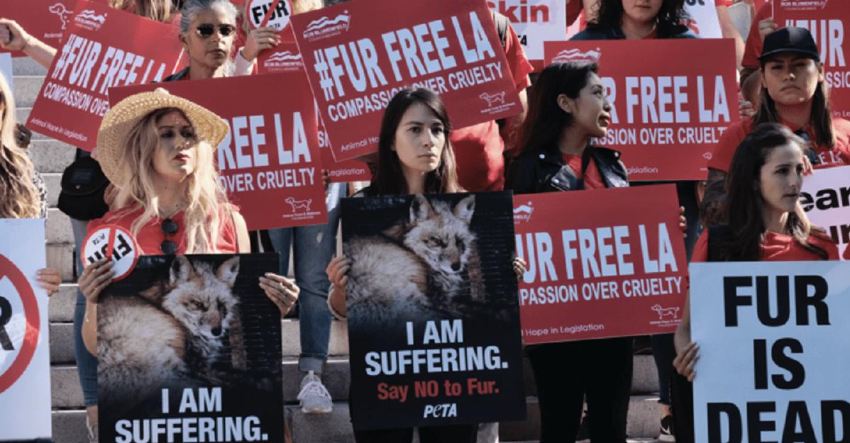 Manifestanti contro il commercio di pellicce