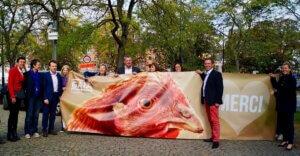 In Vallonia nuovi diritti per gli animali: mai più galline in batteria e non solo