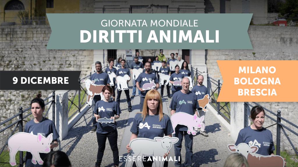 Giornata Diritti Animali Essere Animali