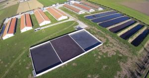 Gli allevamenti riempiono i fiumi di antibiotici. Greenpeace mette a nudo il caso di Brescia