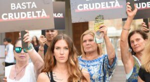 Sfruttamento degli animali: cosa ne pensano gli italiani?