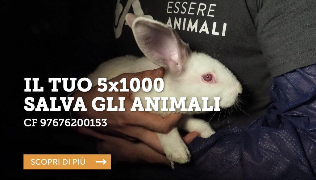 5xmille_difesa_animali