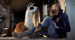 Massimo, l'ex allevatore che ora salva gli animali. La sua storia su Rai3