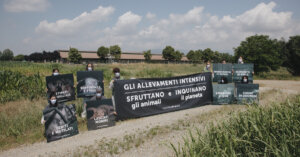 Brescia: in azione davanti a un allevamento di maiali