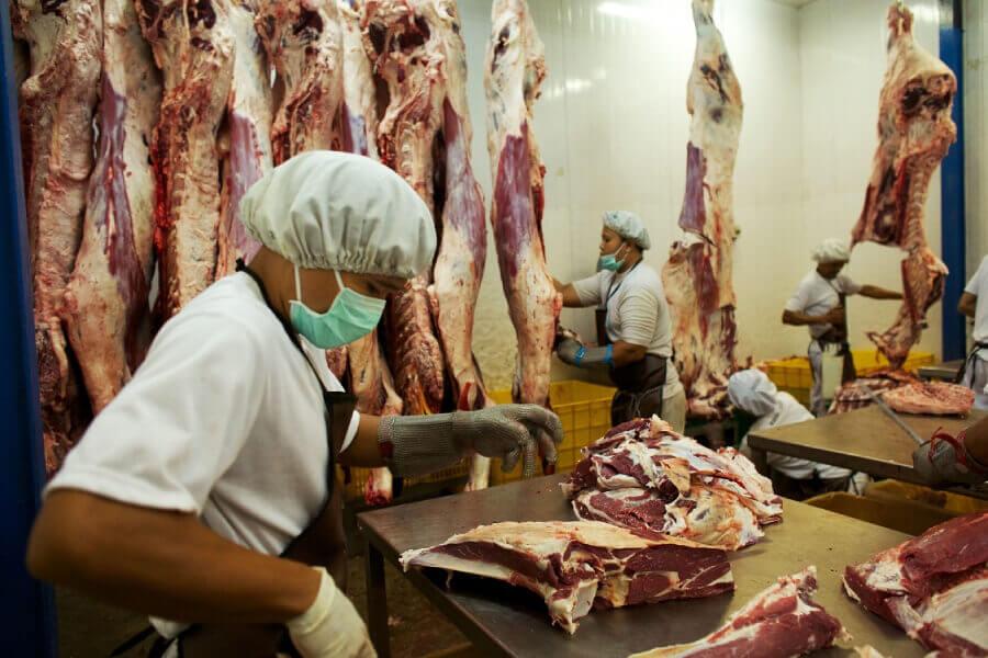 lavoratori carne