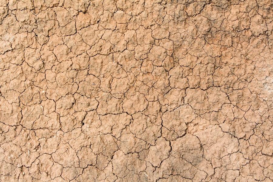 Terra secca per desertificazione