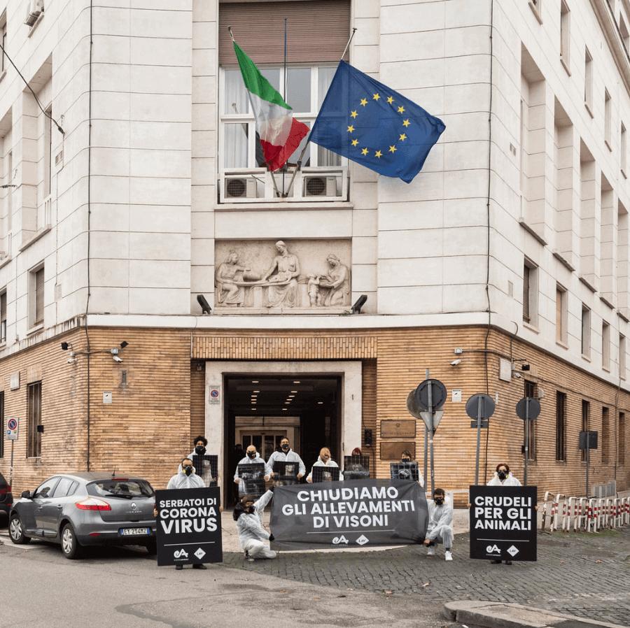 Manifestazione a Roma di Essere Animali contro allevamenti di visoni