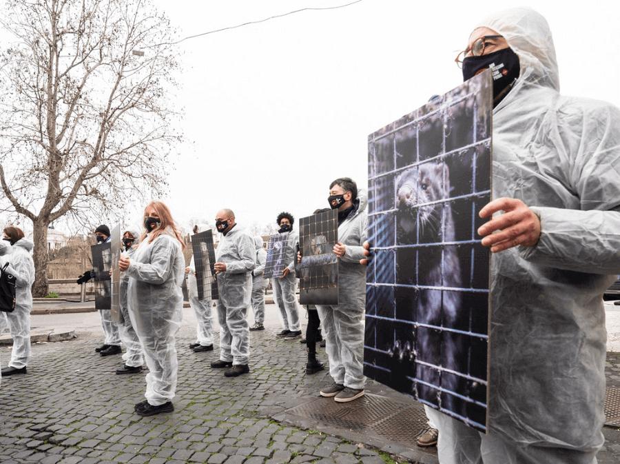Manifestazione a Roma di Essere Animali e Lav